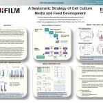 U-Systemic-Strategy_230384a