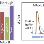 FIGURE 1: Dynamic binding capacity (for MAb A and B) and elution profile (for MAb C) of KanCapA compared with commercially available protein A resins; 5% breakthrough is determined at 6 min of residence time ( left ); 5 mg/mL-resin of IgG (VH3 subfamily) is loaded and elution is performed at pH 3.5. Strip solution is 1 M Acetic acid (right).