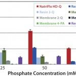 FIGURE 2: 10% BT BSA binding capacity: phosphate tolerance.