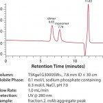 FIGURE 4: SEC analysis of mAb aggregate peak from TOYOPEARL NH2 -750F (fraction 2)