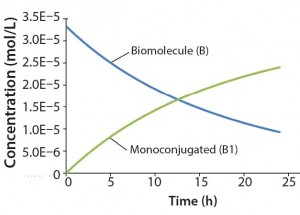 "Figure 2: Reaction kinetics simulation for monoconjugation (using parameters from ""Monoconjugation"" section in the text)"