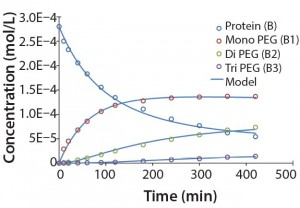 Figure 5: Experimental results for protein PEGylation and corresponding reaction kinetics model. Parameters used in the simulation are from Table 2.