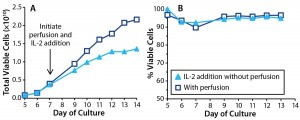 Figure 6: Effects of IL-2 addition in T cells cultured with perfusion (p) and without (). In cultures without perfusion, IL-2 was injected at 24-hour intervals. T-cell (a) growth and (b) viability were monitored throughout the culture period.