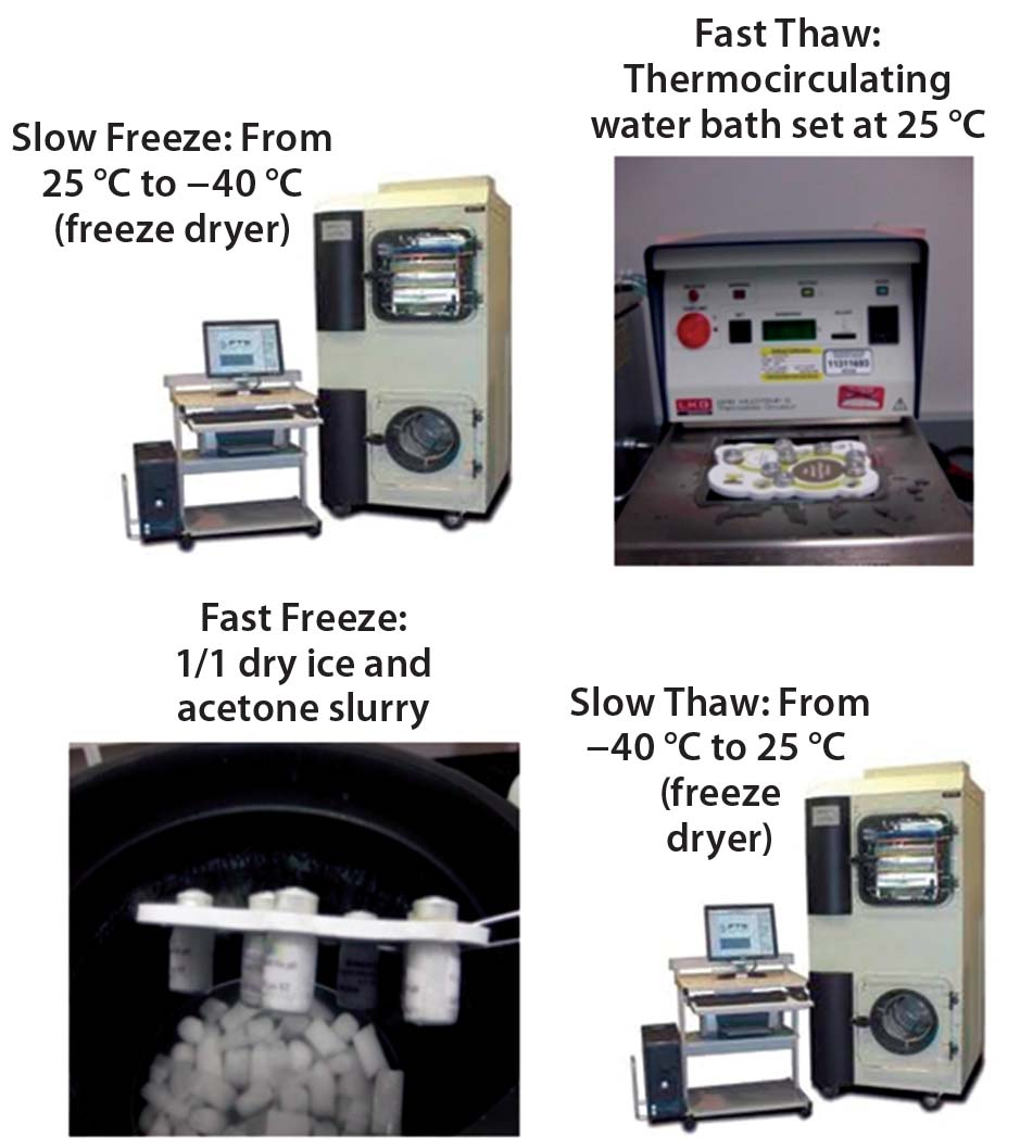 Evaluating Freeze–Thaw Processes in Biopharmaceutical ...