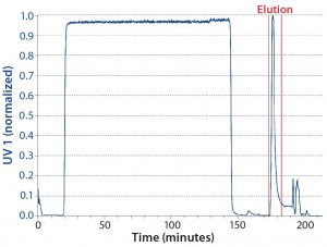 Figure 4: Chromatogram of the batch reference run; product collection pool limits are indicated by vertical red lines.
