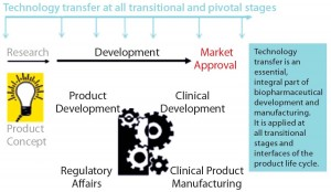 Figure 1: Technology transfer across the product development life cycle