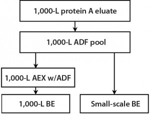Figure 5: During a 1,000-L bioreactor purification run, material was taken for small- scale experiments to demonstrate the effect of ADF on impurities removal in the MAb-A process both with and without AEX.