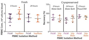 Figure 2: Mean recovery is compared for paired PBMCs isolated immediately or 24 hours after phlebotomy using traditional Ficoll and SepMate methods (left), (n = 6). Mean recovery post cryopreservation is compared for paired PBMCs isolated immediately or 24 hours after phlebotomy for cells thawed in a water bath and using the ThawSTAR System (right) (n = 3).