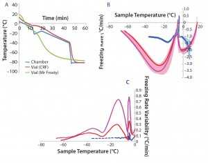 Figure 1: (a) Temperature profiles and sample freezing rates during cryopreservation in a Mr. Frosty or a controlled-rate freezer (CRF); (b) comparison of the freezing rates measured in both devices; blue represents the vials in the CRF, red and purple indicate vials in the inner and outer wells of the alcohol container respectively. The envelopes are standard deviations of the measurements, showing both the range and variability of the measurements.