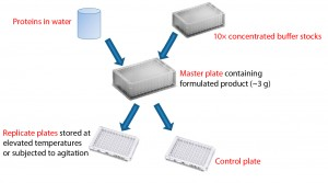 Figure 1: Formulation of proteins using concentrated buffer stocks; protein that has been dialyzed into water is mixed with a concentrated buffer to create a master plate with the desired formulation conditions. Replicate plates created from the master plate allow comparison of stability to different stress conditions using identical formulations.