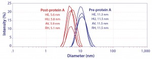 Figure 2: Hydrodynamic diameter of IgG by dynamic light scattering; HE, HU, and AV are prospective biosimilars for Herceptin, Humira, and Avastin. RH is a noncommercial IgG1 monoclonal antibody.