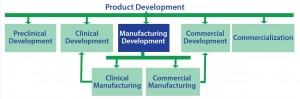 Figure 4: Although the scope of a strategic commercial manufacturing plan is focused on manufacturing development, the plan must be crafted and executed in the context of all the other elements of product development