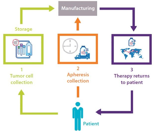 The Cell Therapy Supply Chainbioprocess International