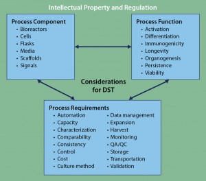 Figure 3: Framework for DST approaches to cell therapy; literature review and analysis of existing tools revealed three core areas for DST consideration: process components, process functions, and process requirements. Despite considerable cross-talk among those areas, overarching considerations of intellectual property and regulation can be applied to complement any DST. At present, no such DST exists for cell therapies.