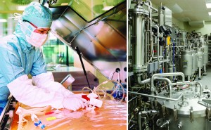 Upstream processing at an IDT Biologika facility in Germany (left) and a SynCo Bio Partners facility in the Netherlands (right) (WWW.IDT-BIOLOGIKA.COM) (WWW.SYNCOBIOPARTNERS.COM)