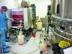 Photo 8: Single-use bioreactor set-up at Sanofi Pasteur