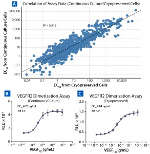 Figure 3: Comparing results for assays run with cells in continuous culture and cryopreserved ready-to-assay cells; (a) correlation of calculated EC50 from 842 cell-based assays using cells in continuous culture (y axis) and cryopreserved ready-to-assay format (x axis); a line of best fit includes an R2 value. To compare VEGFR2 assay conducted on cells in continuous culture (b) and cryopreserved ready-to-assay cells (c), cultured cells were lifted and plated with ligand for 16 h, then incubated with detection reagent; cryopreserved ready-to-assay cells were directly plated with ligand for 16 h before addition of detection reagent.