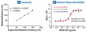Figure 5: Parallelism and relative potency of a reference standard can be measured with PathHunter assays (see Table 1). (A) Measured relative potencies are plotted against expected relative potencies. The assay performed with high degrees of accuracy, precision, and linearity. (B) Variation in EC50 of VEGF165 was determined from three independently manufactured VEGFR2 bioassay lots. Excellent reproducibility is observed both within individual lots and among lots, with CVs <11%.