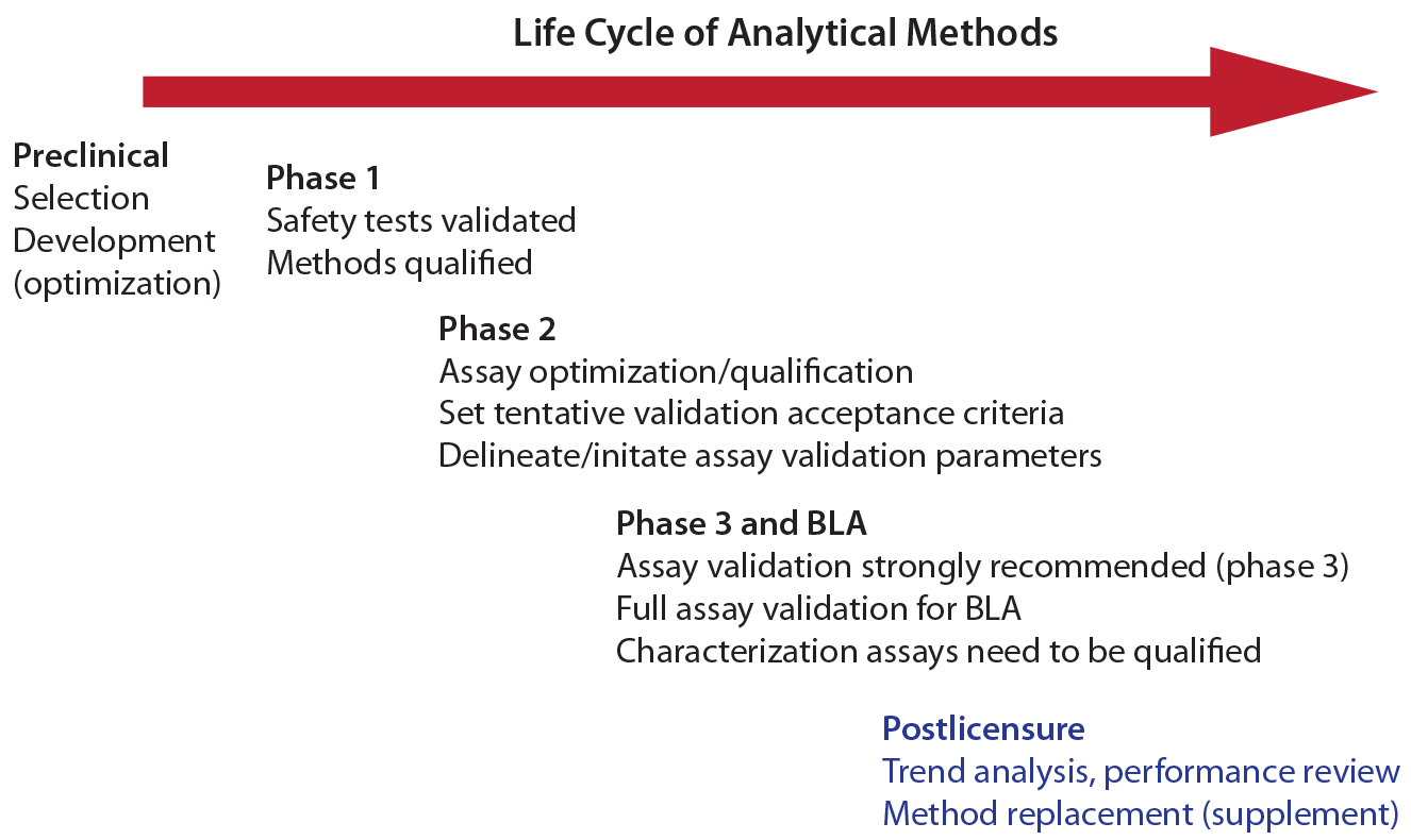 Bridging Analytical Methods For Release And Stability Testing