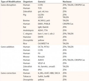 Table 1: Abbreviated list of examples of ZFN-, TALEN-, and CRISPR/Cas-mediated genome editing in human cells and model organisms; references for each available in cited source (11)