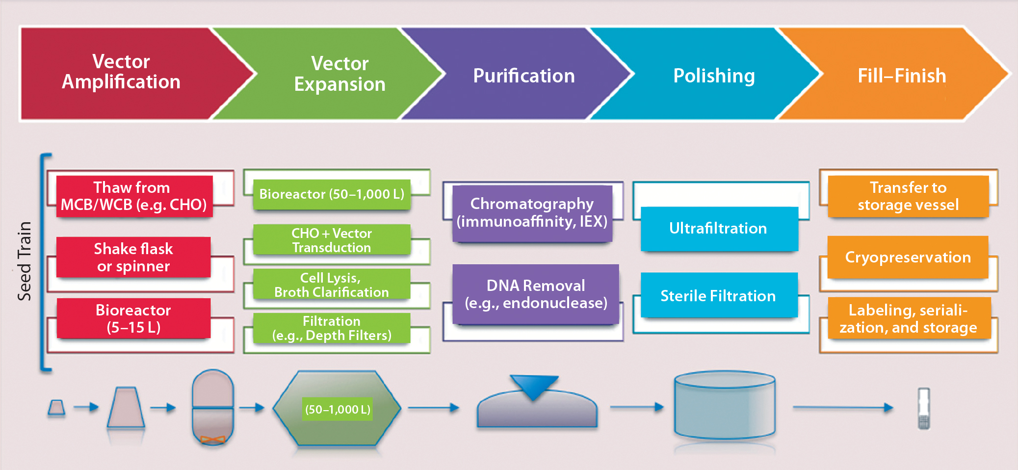Emerging Platform Bioprocesses For Viral Vectors And Gene