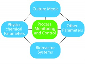 Figure 1: Essential components of process optimization