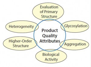 Figure 2: Main types of analytical and functional characterization