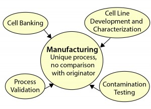 Figure 3: Biosimilar manufacturing support requirements