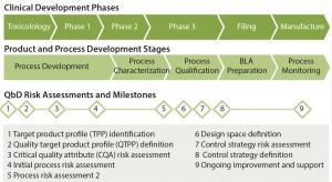 Figure 1: The quality by design (QbD) approach aligns with product and process development stages and clinical development phases. QbD provides milestones and assessments to facilitate product development and ensure quality. (BLA = biologics license application)