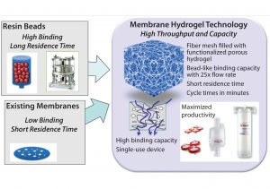 Figure 7: Membrane hydrogel technology (Natrix Separations) — single-use, functionalized, porous hydrogel supporting higher throughput and loading than conventional resins