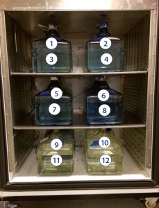 Photo 4: Standard 12-bottle positions in chamber