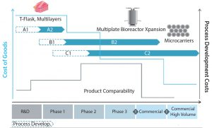 Figure 9: The path of both manufacturing cost of goods (blue line) and process development costs (grey line) in route to industrialiaation; arrows A1, A2, B1, B2, C1, and C2 represent the different technologies available for the large-scale manufacture of allogeneic adherent cells (25).