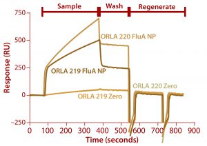 Figure 7: Binding of FluA NP on a Biacore instrument with TBS-T running buffer at a flow rate of 5 µL/min throughout; sample (FluA NP or buffer control zero) was injected for five minutes, followed by a wash with TBS-T for two minutes and regeneration with two 30-second injections of 100 mM.