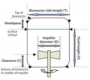 Figure 5: Dimensional representation of a bioreactor