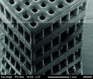 fabricated with stereolithography from a biocompatible and biodegradable polymer