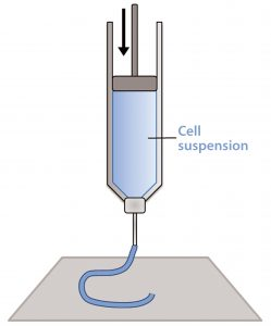 Figure 1: Schematic of a piston extrusion bioprinter; a cell suspension, molten thermoplastic, or viscous liquid is loaded into a syringe and extruded.