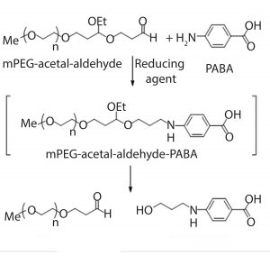 Figure 2: Derivatization of mPEG-acetalaldehyde impurity using PABA