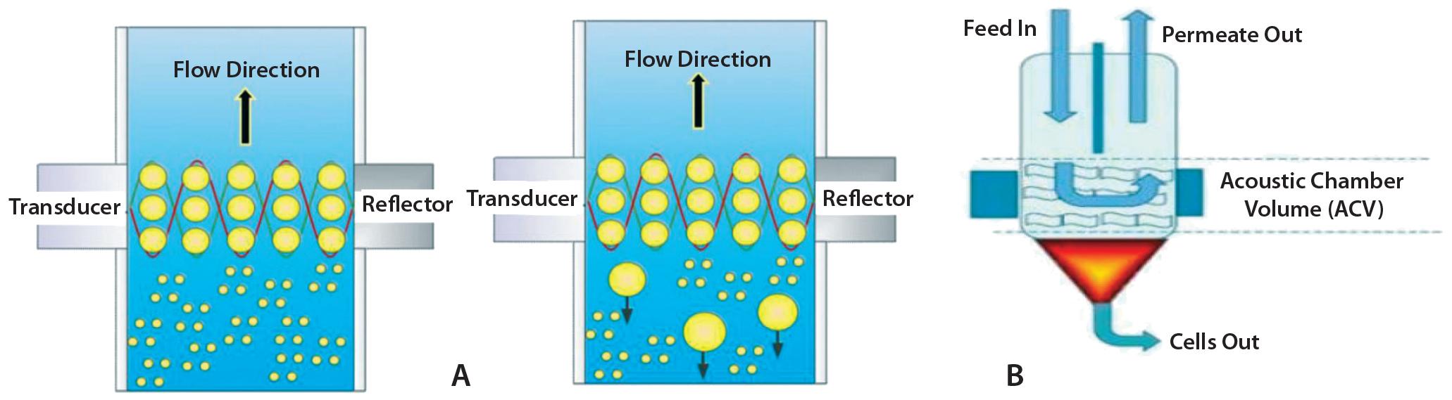 Case Study: Depth-Filter Turbidity Recoveries - Single-Use Harvest
