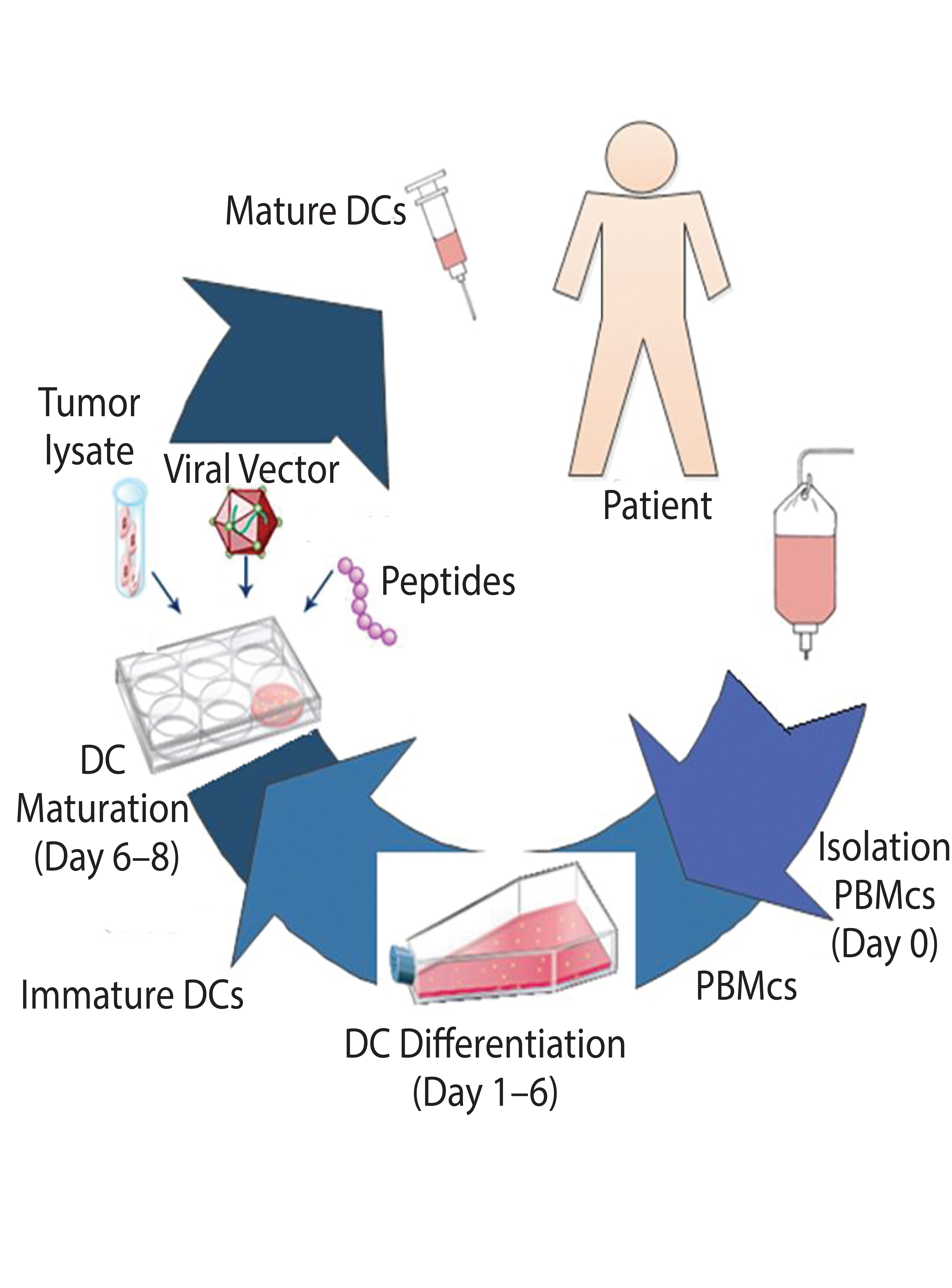 Analysis of Cost of Cell Therapy Manufacturing: Autologous Cell